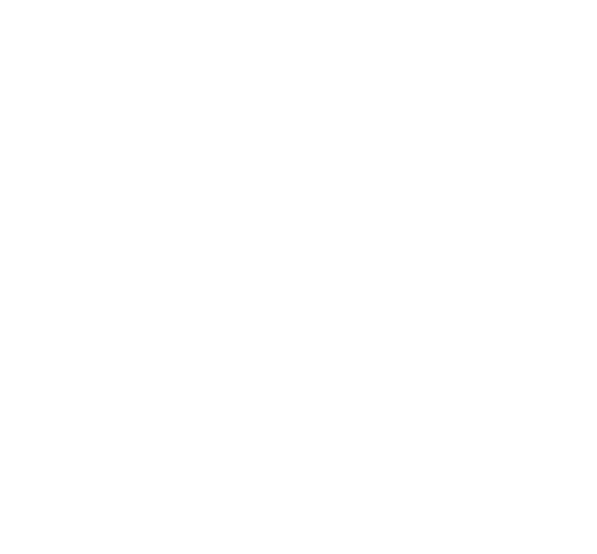 G&C Consulting Srl
